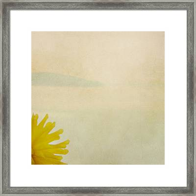 Framed Print featuring the photograph Dahlia Rising by Sally Banfill