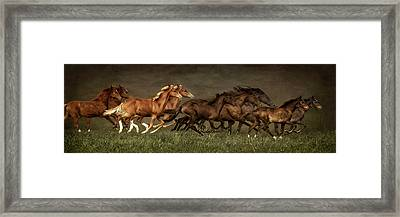 Daily Double Framed Print