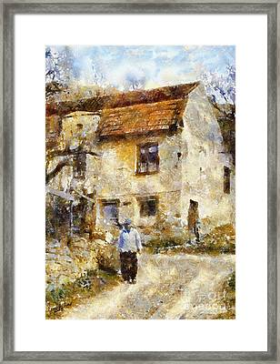 Daily Walk Framed Print by Shirley Stalter