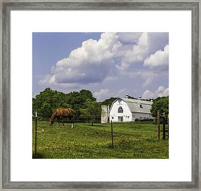 Dairy Barn Panorama 03 Framed Print