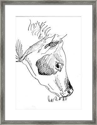 Dairy Cow Framed Print by Tamara Zemlyanaya