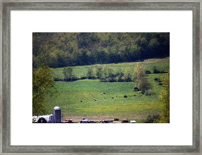 Dairy Farm In The Finger Lakes Framed Print by David Lane