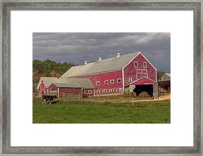 Dairy Farming Nh Framed Print