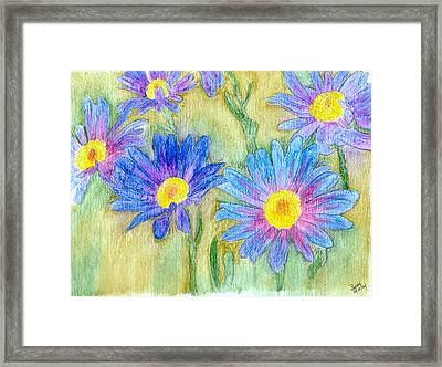 Daisey Field Framed Print by Margie  Byrne