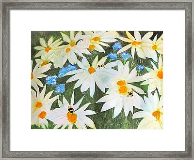 Daisies And Bumblebees Framed Print