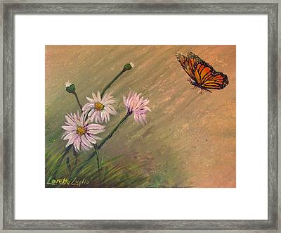 Daisies And Butterfly Framed Print