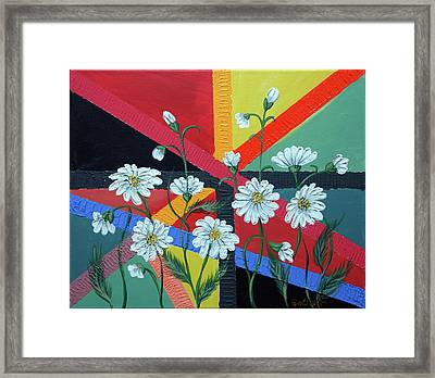 Daisies In A Modern Backgrownd Framed Print