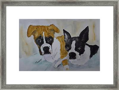 Daisy And Fenway Framed Print by Kathy Sweeney