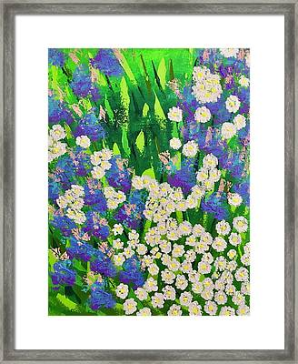 Daisy And Glads Framed Print