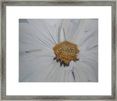 Framed Print featuring the painting Daisy by Betty-Anne McDonald
