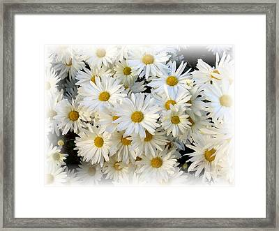 Daisy Bouquet Framed Print by Carol Sweetwood
