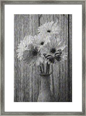 Daisy Butterfly Abstract Framed Print by Garry Gay