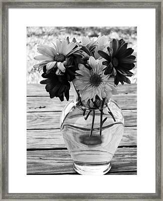 Daisy Crazy Bw Framed Print by Angelina Vick