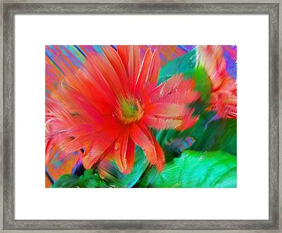 Daisy Fun Framed Print