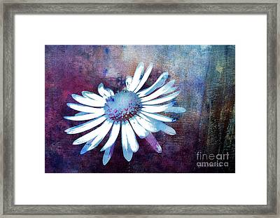 Framed Print featuring the mixed media Daisy by Jutta Maria Pusl