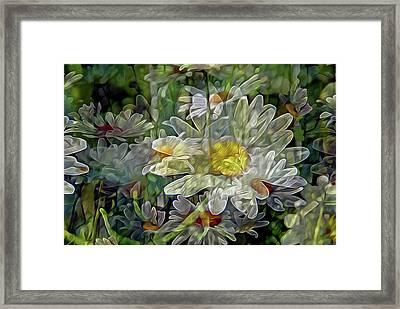 Daisy Mystique 8 Framed Print