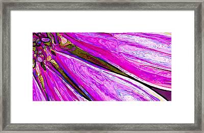 Daisy Petal Abstract 1 Framed Print