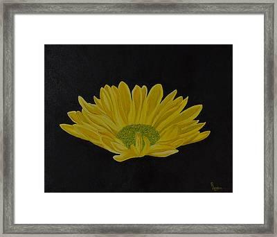 Daisy Framed Print by Roberta Landers