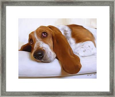 Daisy Framed Print by Simon Sturge