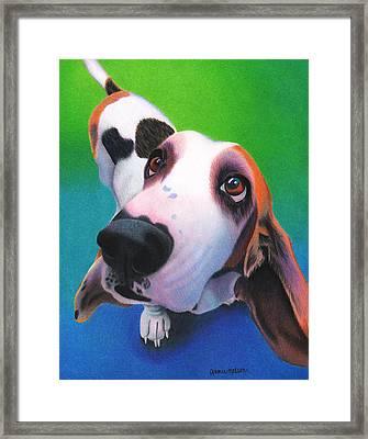 Basset Hound - Daisy Framed Print by Annie Nelson