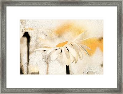 Daisyday - 56at01 Framed Print by Variance Collections