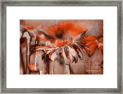 Daisyday - 98t3c Framed Print