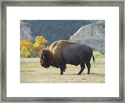 Dakota Badlands Majesty Framed Print