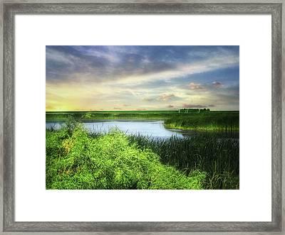 Dakota Wetlands 7 Framed Print