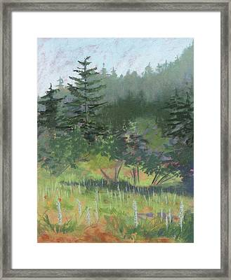 Dale Creek Meadow Framed Print