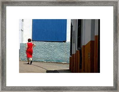 Dalias Framed Print by Jez C Self