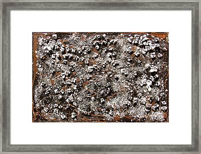 Dall'alto Framed Print by Biagio Civale