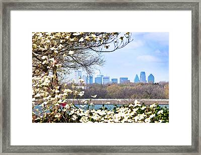 Dallas Through The Dogwood Flowers Framed Print by Tamyra Ayles