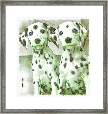 Dalmatian Brothers Framed Print