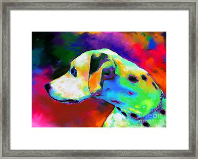 Dalmatian Dog Portrait Framed Print by Svetlana Novikova