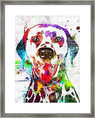 Dalmatian Grunge Framed Print