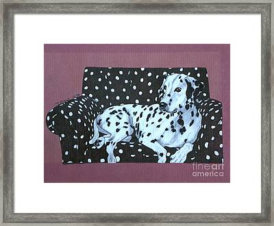 Framed Print featuring the drawing Dalmatian On A Spotted Couch by Terri Mills