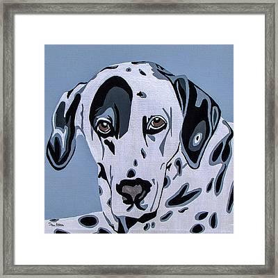 Dalmatian Framed Print by Slade Roberts