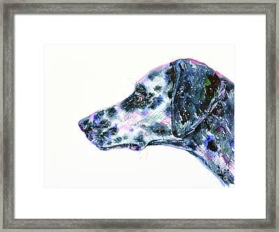 Framed Print featuring the painting Dalmatian by Zaira Dzhaubaeva