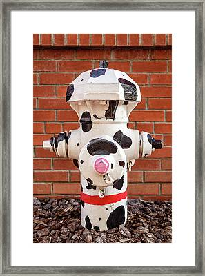 Framed Print featuring the photograph Dalmation Hydrant by James Eddy