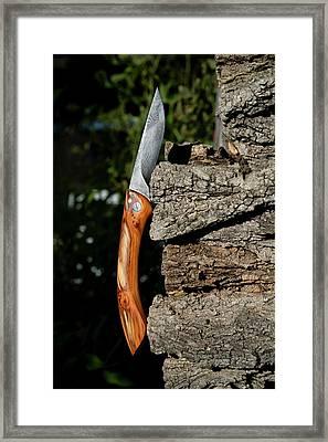 Damascene Steel Folding Knife Framed Print