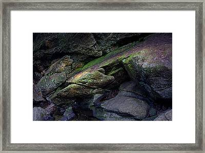 Dammit Granite Framed Print by Jerry LoFaro