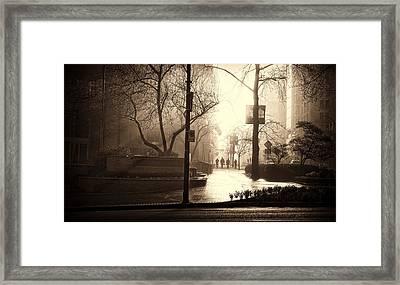 Damp Dawn Framed Print