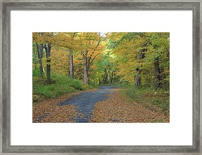 Dana Common Road In Autumn Quabbin Reservoir Framed Print by John Burk