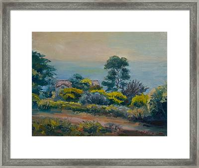 Dana Point Overlook Framed Print