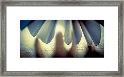 Dance Framed Print by Maggie Terlecki