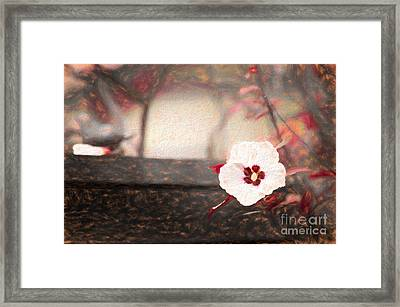 Dance Of Colors II Framed Print
