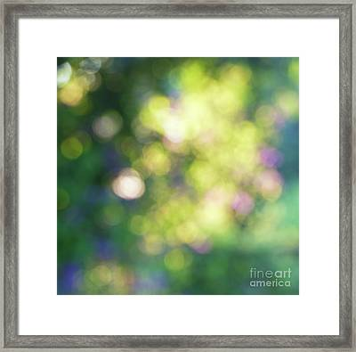 Dance Of Dappled Light Framed Print