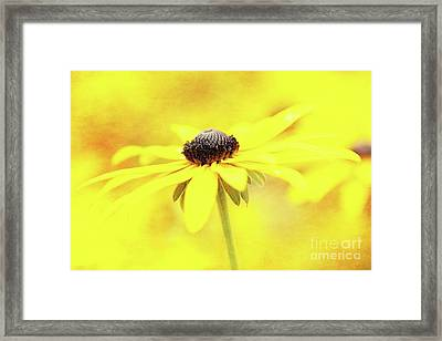 Dance Of Joy Framed Print