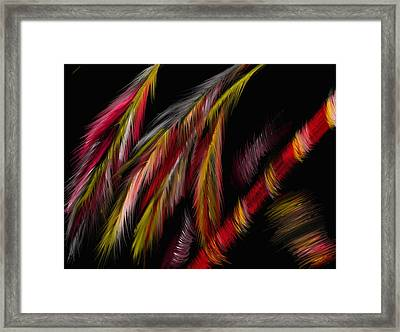 Dance Of The Night Framed Print by Michelle Dick