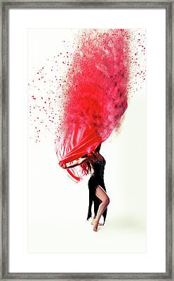 Dance Of The Viel Framed Print by Nichola Denny